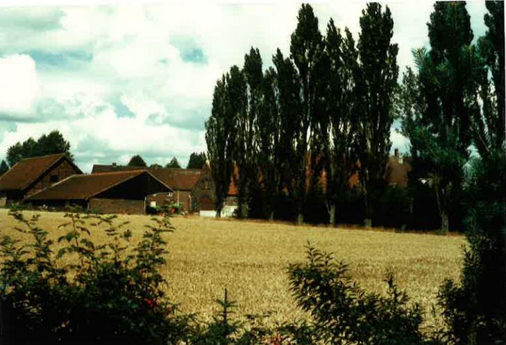 Landwirtschaft Sünninghausen
